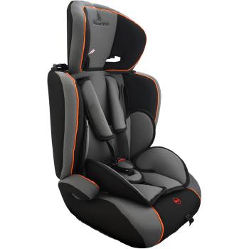 Cadeira para auto Galzerano Astor LX 9 a 36kg